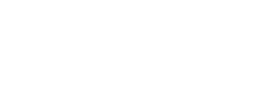 The Allegheny Foundation